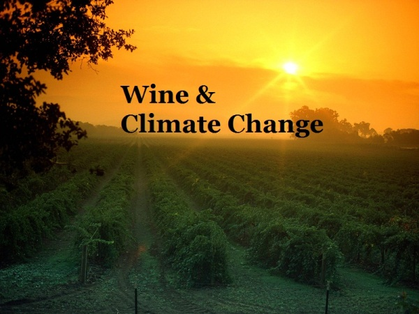Wine and Climate Change IndieGoGo.com/wineandclimatechange